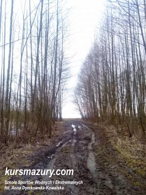 Ścieżka prowadząca na dziki brzeg jeziora Śniardwy.